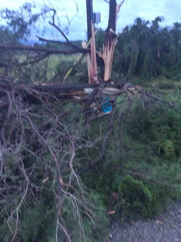Trees torn apart in Pleasant Valley near Poteau.