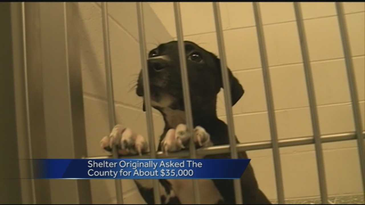 An animal shelter in Washington County may have to turn animals away due to too many animals coming in.