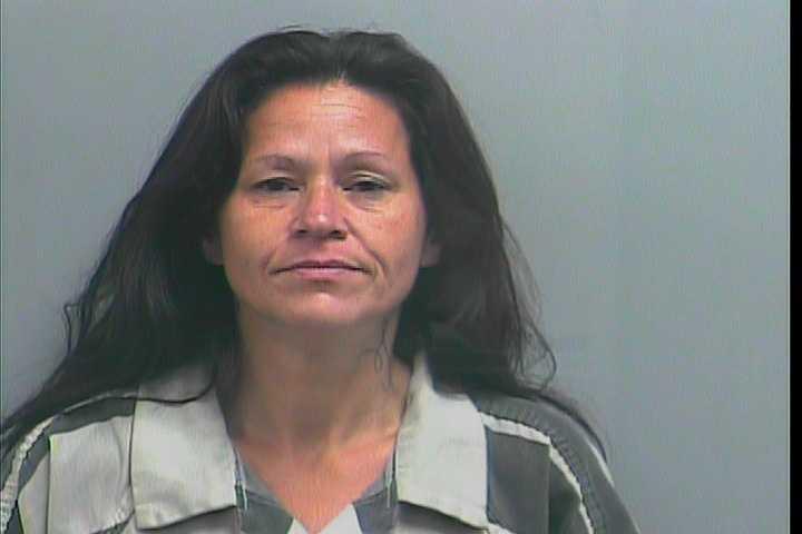 Fern Denise Wood, 43, theft of property, breaking & entering, criminal trespass