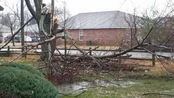 The NWS in Tulsa said they will be in Siloam Springs to survey storm damage and downed trees in the area following storms from Saturday night.