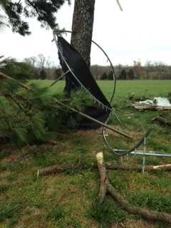 This family's trampoline was blown into a tree.
