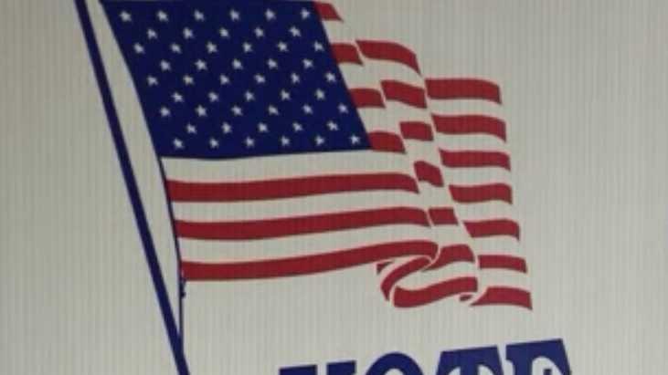 Vote Voter Voting.jpg