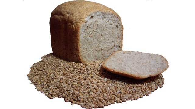 organic bread surrounded by wheat grain