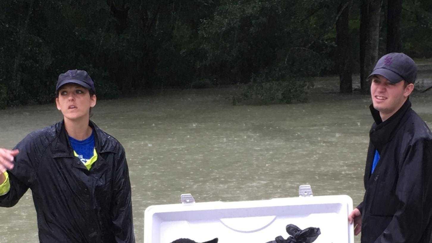flooding dog.jpg