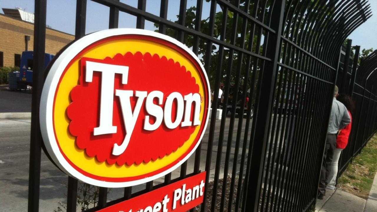 Tyson 1.JPG - 28369952