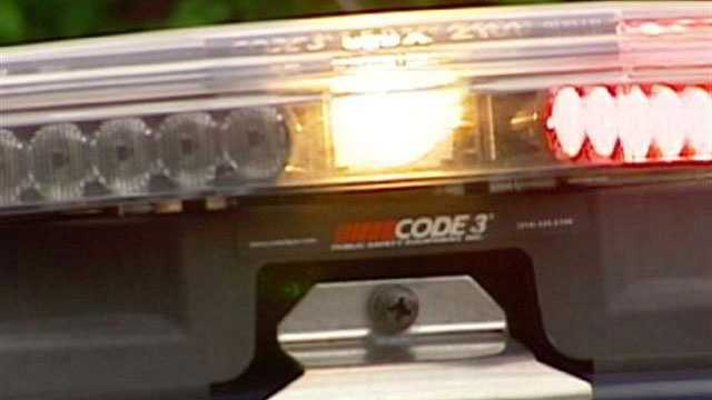 Generic police car lights - day