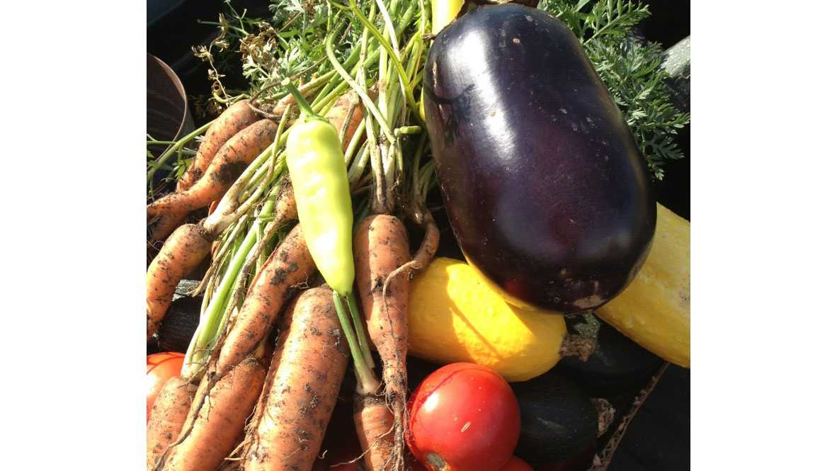 Larry Moore's vegetables