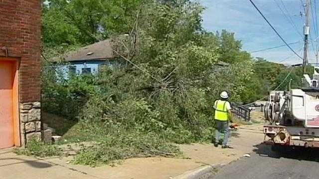 A large tree fell on a Kansas City day care center Thursday afternoon, but no injuries were reported. KMBC 9's Haley Harrison reports.