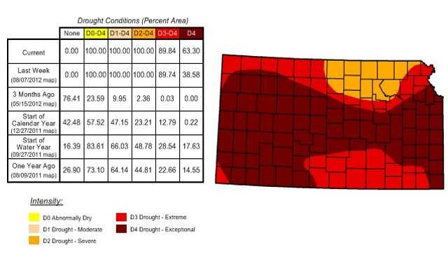 "This map shows ""extreme"" and ""exceptional"" levels of drought covering almost the entire state of Kansas.  Only the northern portion of Kansas is seeing a lower level of severity, but it's still bad."