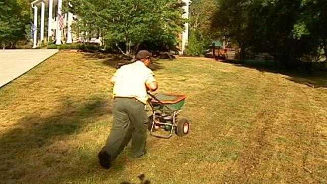 Does it look like your grass is fried?  You may need to reseed.