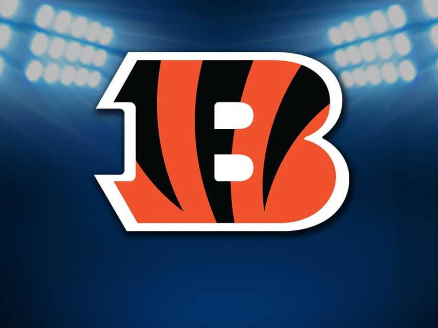 #20 - Cincinnati Bengals - Average ticket price of $69.01 is 4.2% less than last year.Parking: $26.00Hot Dog: $4.75Soft Drink: $5.00