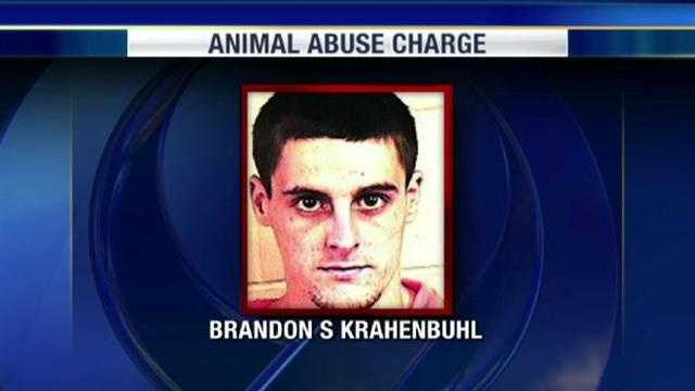 A Blue Springs man was charged with torturing and killing a cat, telling police that he did it to avoid killing himself.