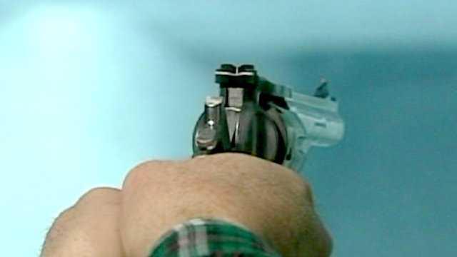 Generic gun range