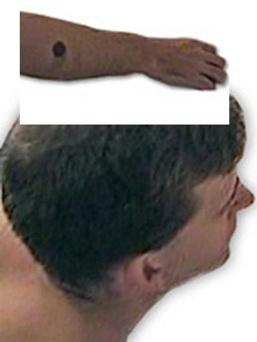 """FBI: """"Law enforcement officials are seeking information which will lead to the identification of this unknown suspect. Images of this person abusing a young girl were found in a video on the Internet in May of 2005. His current whereabouts are unknown.The individual is described as a White male, approximately 180 to 200 pounds, with brown hair. He has a dark circular mark on his right forearm."""""""
