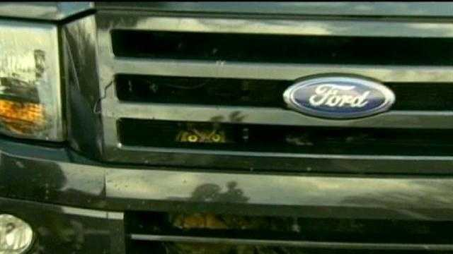 Owl in pickup truck grill