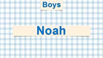4) Noah