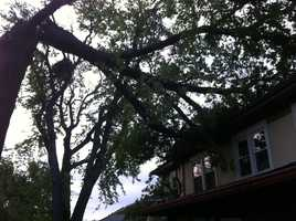 A tree toppled by high winds rests on a home at 68th Street and Wornall Road.Upload your own pictures to u Local