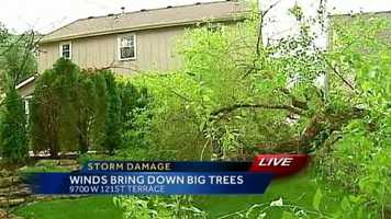 Trees down in a back yard along 121st Terrace in Overland Park.Upload your own pictures to u Local