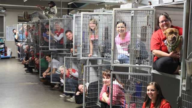People at the KC Pet Project celebrate the adoption of 228 pets from its shelter and 777 pets overall from the weekend Mega Match-a-thon
