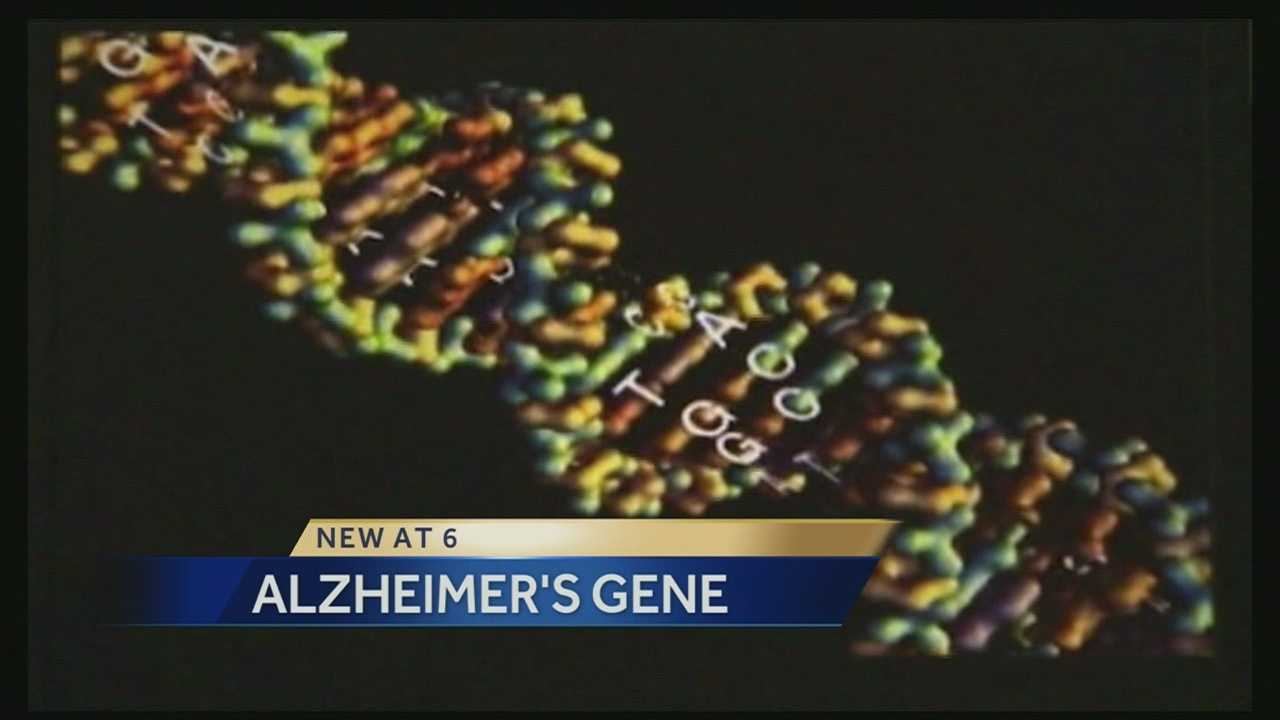Researchers looking for new ways to diagnose and treat Alzheimer's disease say they're learning more and more about the genetic factors that go into it.