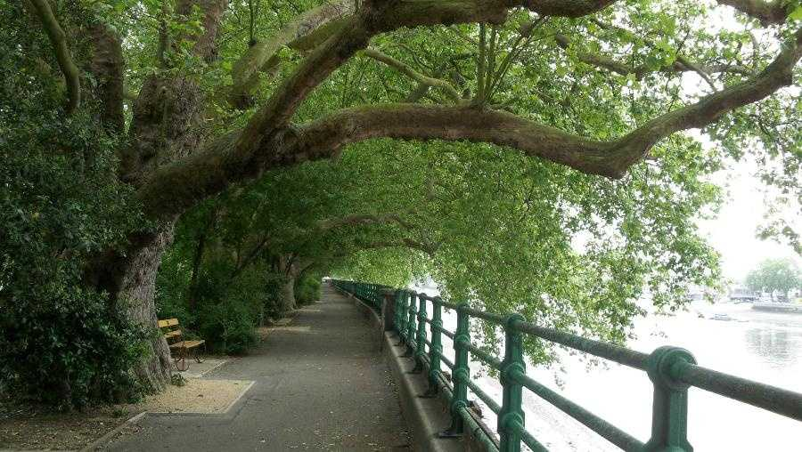 Bishop's Park – London, England -- Along the Thames River, film fans can visit the park where Father Brennan warns Mr. Thorn that his newly adopted child is demonic, before making his way to the nearby All Saints Church where a fallen lightning rod ends his attempt to save the family.