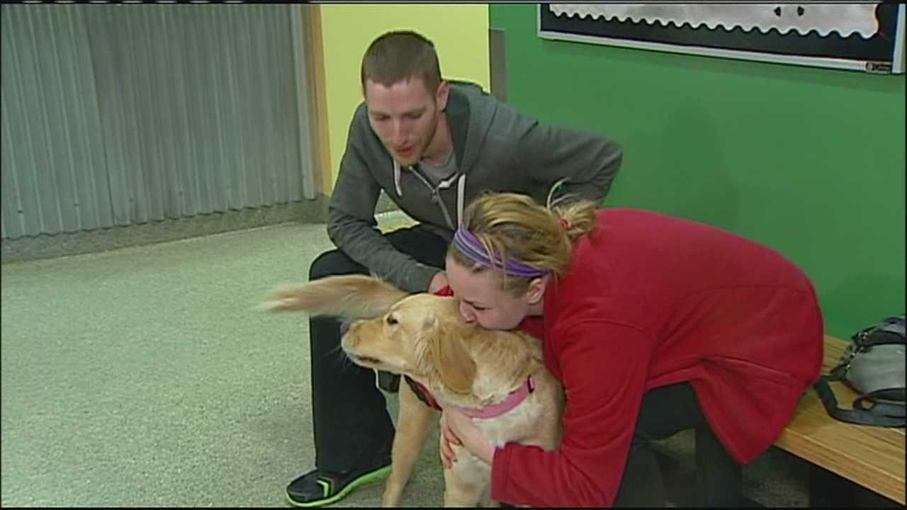 A Kansas City couple who had their home burglarized worried they'd never see their beloved golden retriever again, but a Good Samaritan helped bring them back together.