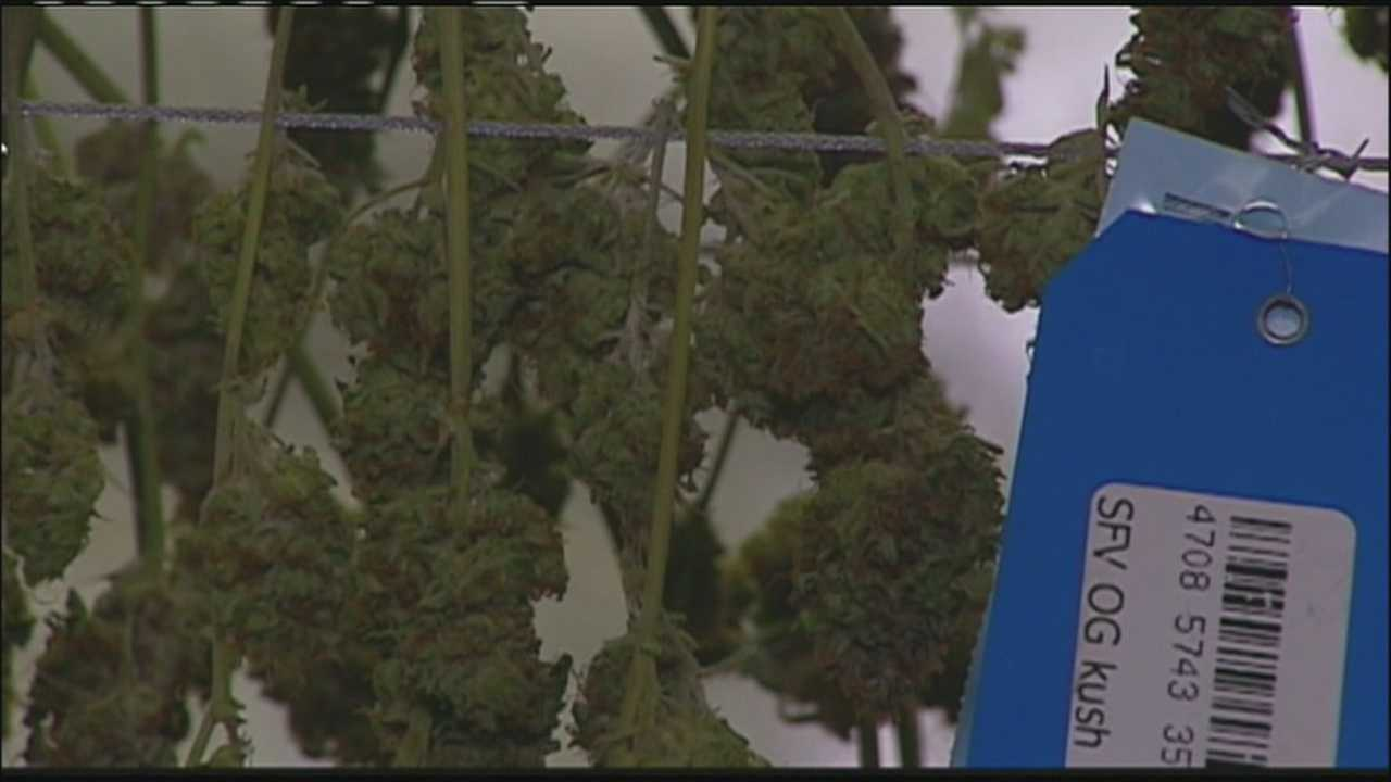 The Jackson County Legislature is considering a get-tough-on-marijuana resolution, but it hasn't passed as quickly as some supporters had feared.