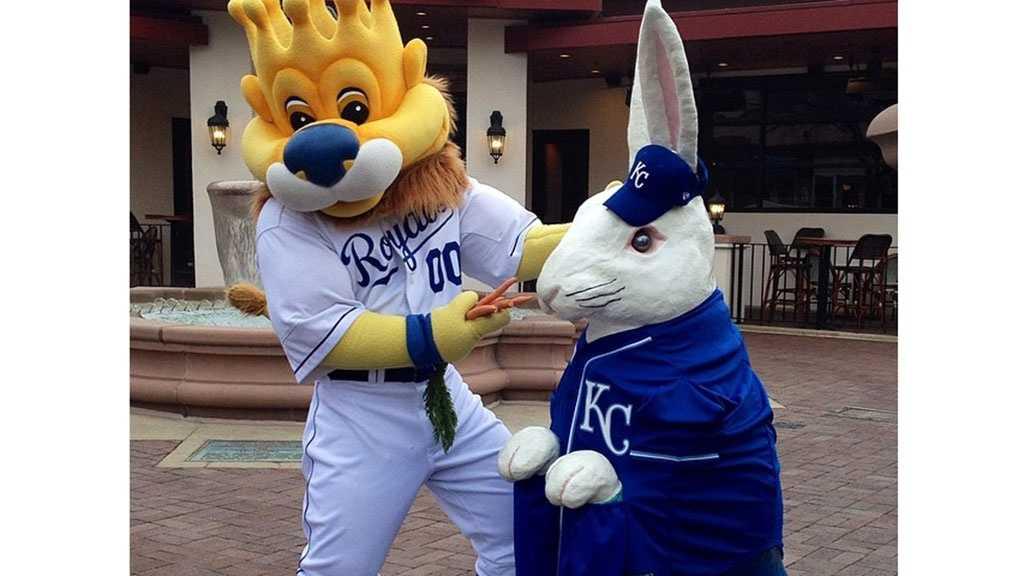 Plaza Easter bunny, Royals uniform