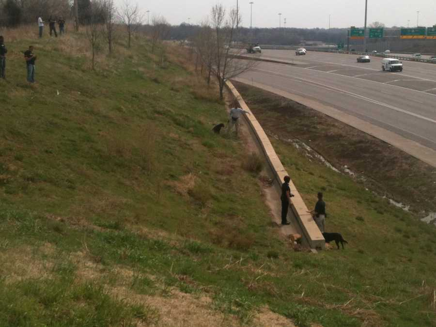 Search dogs and investigators check out an area near Grandview Road and I-435 on Wednesday.