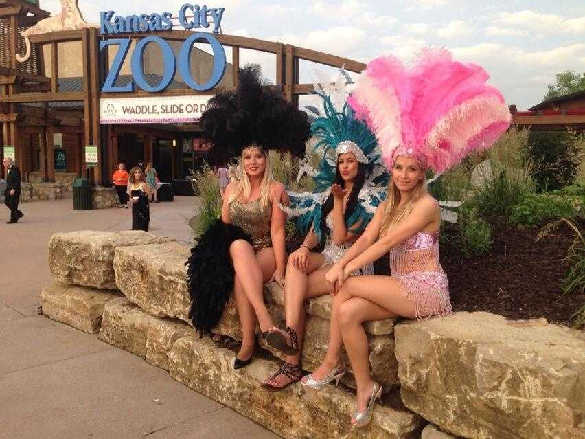 Photos taken by KMBC and/or tweeted @kmbc during Jazzoo.  For more information about this annual event, click here.