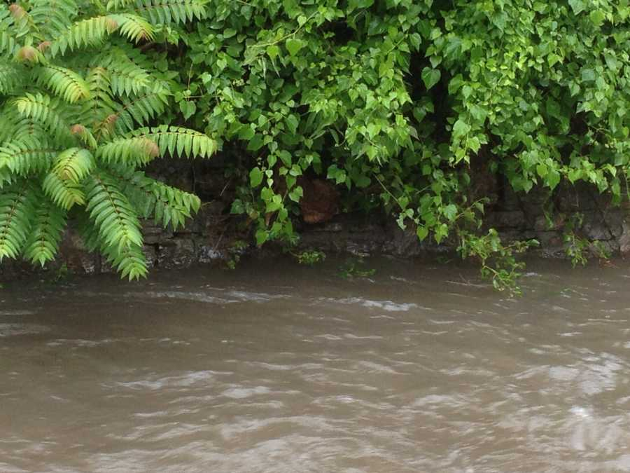 Kansas City firefighters and police officers are working to rescue a fawn from high water. Emergency crews were called to 51st Street and Indiana Avenue about 9:15 a.m.