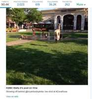 Some girls did cartwheels and back-flips behind Bryan Busby's live weather report from Zona Rosa on KMBC 9 News at 6 o'clock. This is a snapshot from a Vine video tweeted @kmbc.