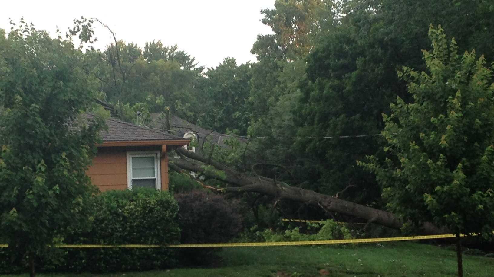 Leawood tree on house
