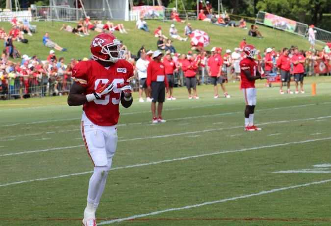 Kansas City Chiefs fans look forward to a wide receiver emerging from training camp. Jerrell Jackson is one of the taller targets among Kansas City's wide receivers. Missouri football fans will remember his 50 receptions for 656 yards in the 2010 season, according to mutigers.com.