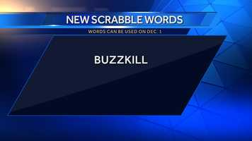 Buzzkill: one that has a depressing or negative effect