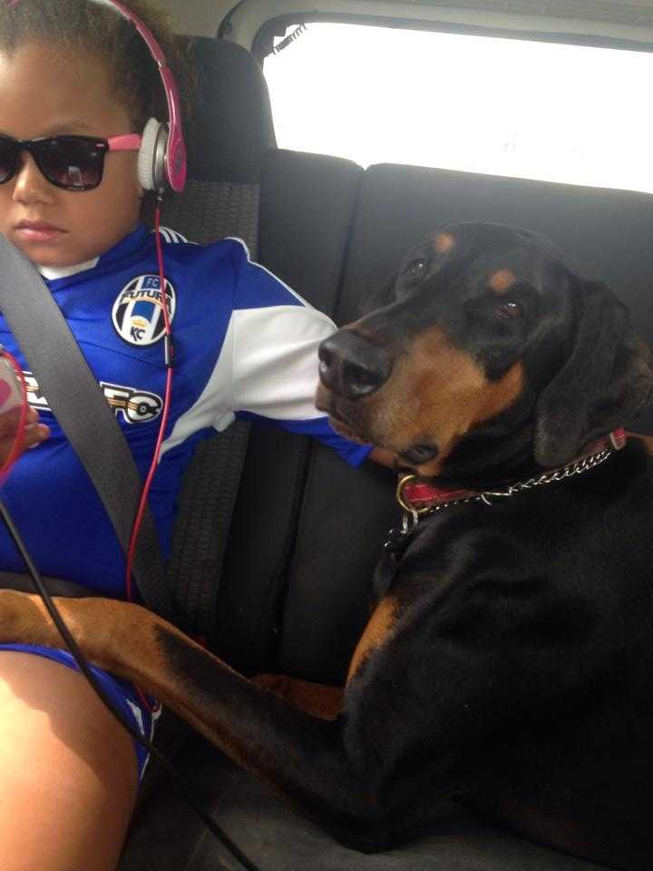 Amee Reed-Small – Major the ferocious Dobie!