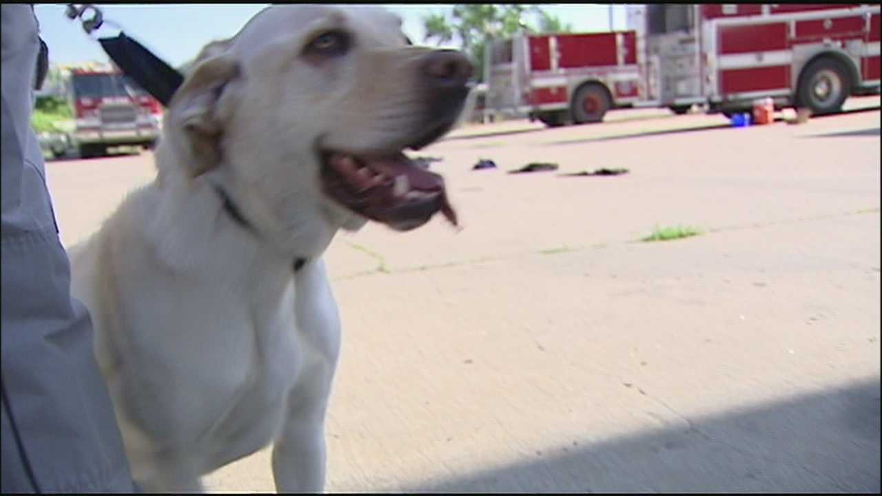 Two K-9 investigators from the Kansas City Police Department showed off their skills in detecting evidence in arson investigations on Wednesday.