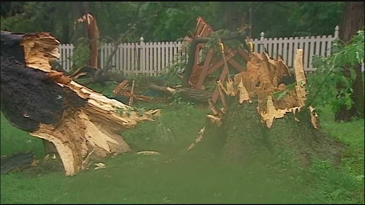 Storms blew through a northland Kansas City neighborhood Monday afternoon, bringing down large trees, thick branches and playground equipment.