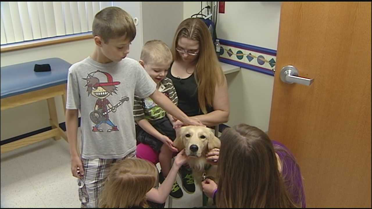 Children's Mercy Hospital isn't just for kids anymore, and people shouldn't be surprised to see a golden retriever roaming the halls.