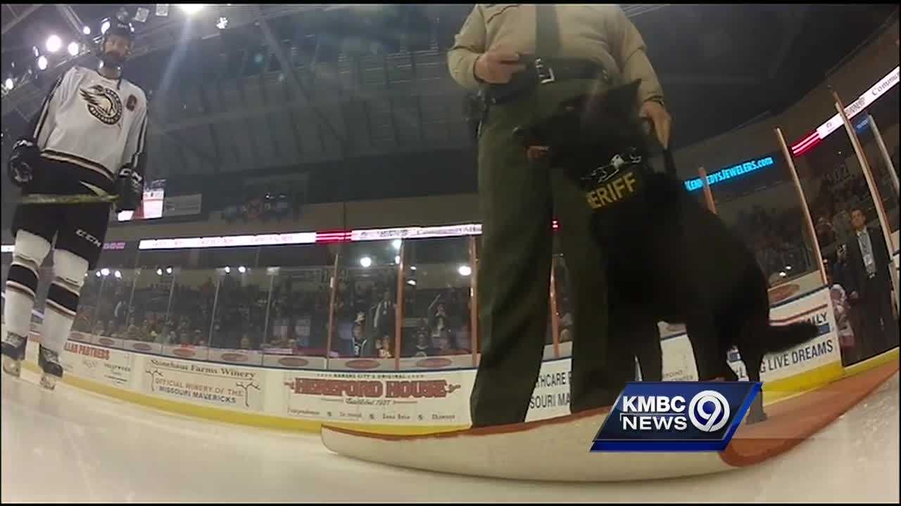 The red-hot Missouri Mavericks took time Wednesday to honor some of the most important people and animals that help out in everyday life.