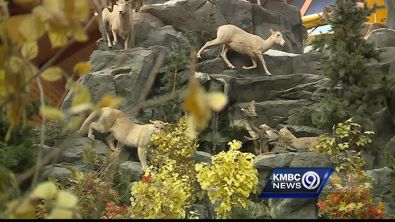 Cabela's has announced plans to open its second store in the Kansas City metropolitan area and the first on the Missouri side of the state line.