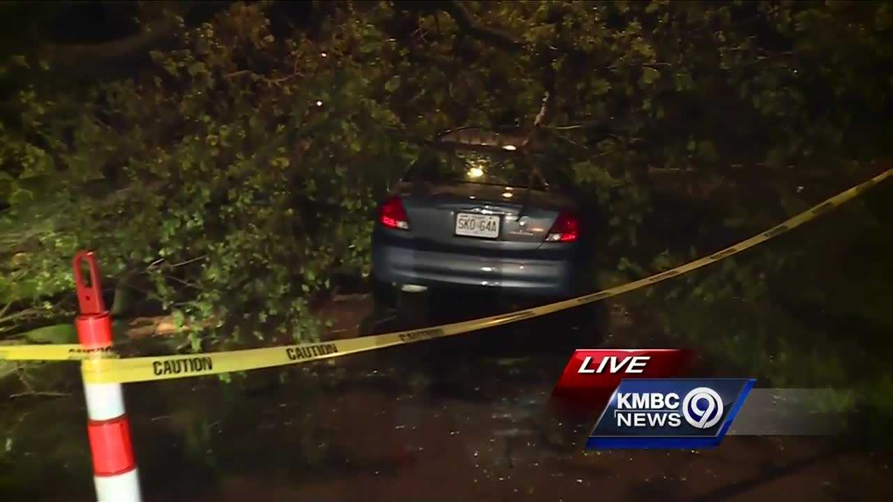 It was raining so hard on Thursday night that a Kansas City driver didn't see a tree in the middle of the road and ran right into it.