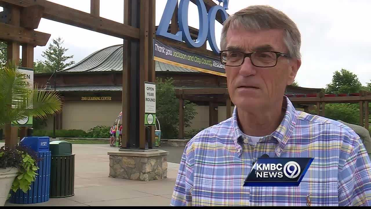 The director of the Kansas City Zoo says the Cincinnati Zoo made the right call to put down its large gorilla after a boy got into the animal's exhibit this weekend.