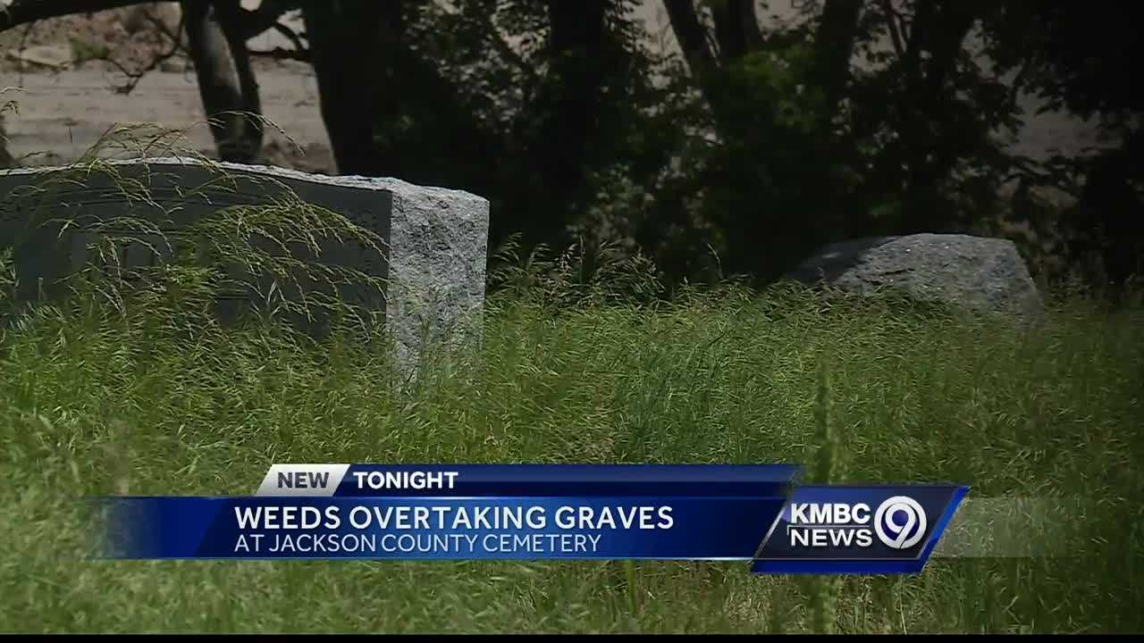 Overgrown grass is preventing a woman from paying respects to her late grandmother.