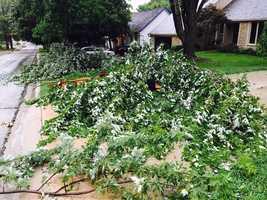Storm damage in Lenexa, Kansas.