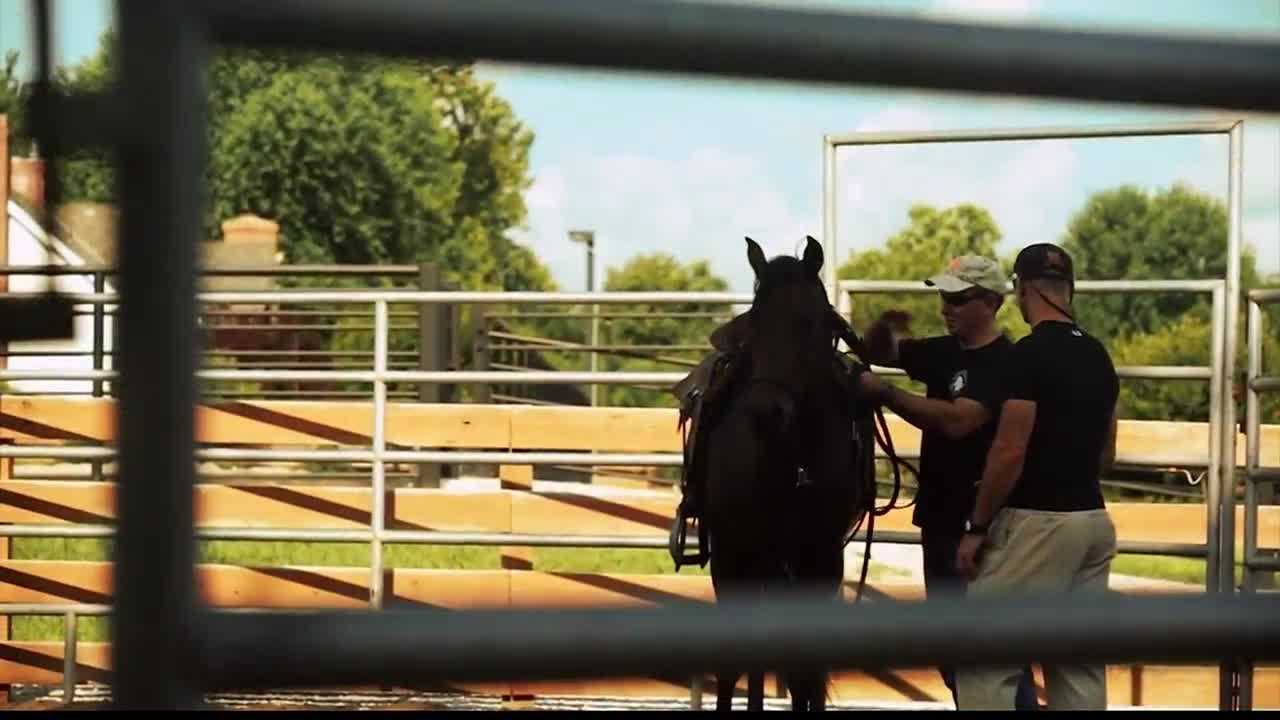 Combat veterans are getting help thanks to an equine program based in Stilwell.