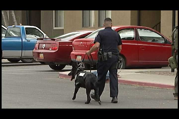 Police used a K-9 unit in the operation