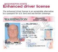 DHS-designated enhanced driver's license