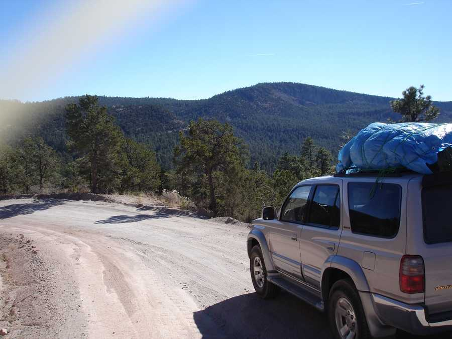 """""""One holiday I will always remember is Christmas 2010. My wife, Sophia and I drove way up into the Jemez mountains to cut down a Christmas tree,"""" Green said."""