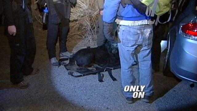 Only on 7, a man and his dog are rescued from the Sandia mountains late last night.
